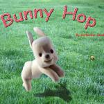 """Bunny Hop"" a board book. Funny Bunny teacher baby concept like over under around and through."